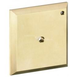 Hansgrohe iControl manuel plaque