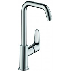 Hansgrohe Focus 1gr WTM 240 uitloop 120° +waste